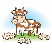 image of caw  - Character cheerful cow in the meadow with flowers - JPG