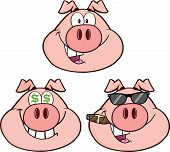 Pig Head Cartoon Characters