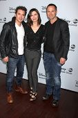 LOS ANGELES - JAN 17:  Dominic Zamprogna, Finola Hughes, William deVry at the ABC TCA Winter 2014 Pa
