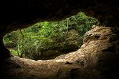 stock photo of cave  - Green trees view from the inside of the cave - JPG
