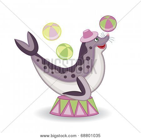 circus sea lion (vector illustration)