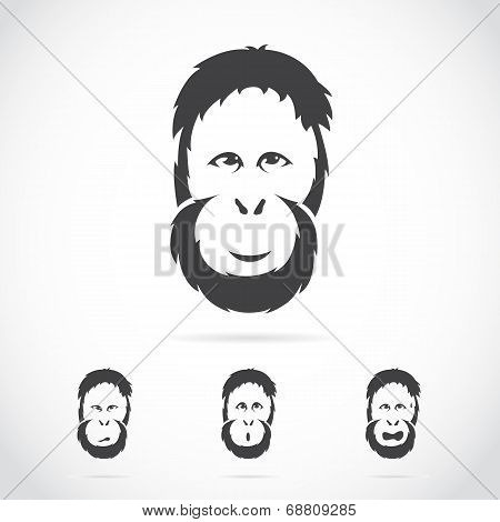 Vector Image Of Orangutan Face