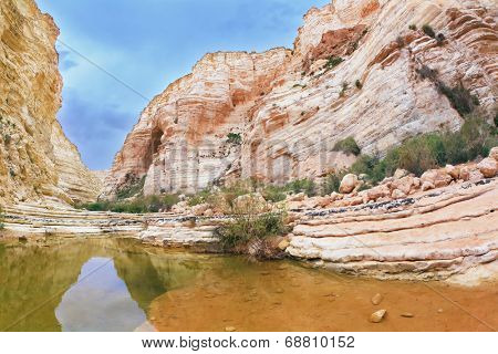 Picturesque canyon Ein-Avdat in the Negev desert. Clean cold water in the creek canyon. Sandstone walls apart, like butterfly wings