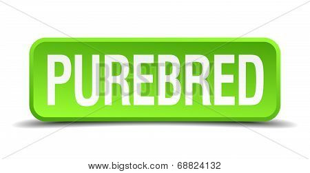 Purebred Green 3D Realistic Square Isolated Button