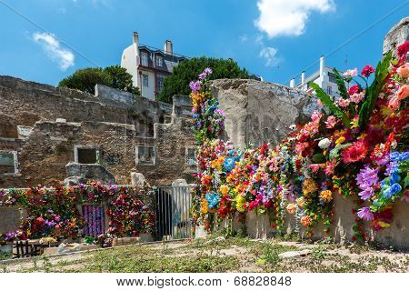Ruins And Flower, Lisbon (portugal)