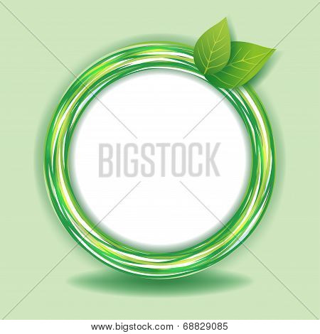 Eco Green Background With Leaves And Circles