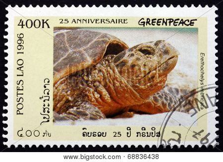 Postage Stamp Laos 1996 Hawksbill Sea Turtle