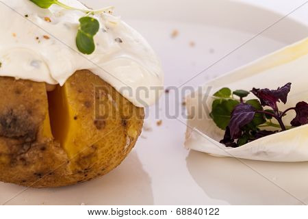 Baked Jacket Potato With Sour Cream Sauce