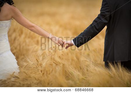Wedding couple on their wedding day - holding hands while posing in a barley field
