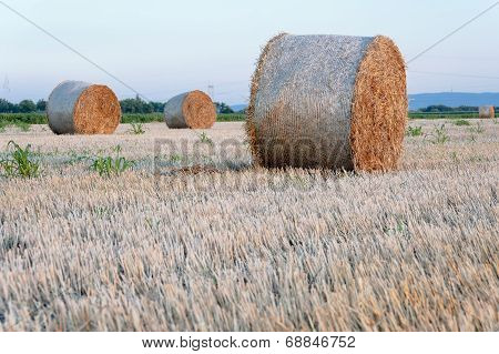 Straw Bale / Hey Stack On Golden Sunny Day With Clear Skies In The Background