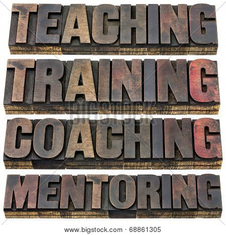 teaching, training, coaching  and mentoring - a collage of isolated words in vintage letterpress wood type with ink patina