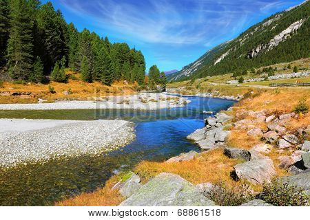 Autumn creek shallow. Austrian Alps. The narrow stream flows between fields and pine forests