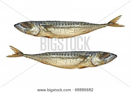 Pisces.two Cold Smoked Mackerel.isolated.