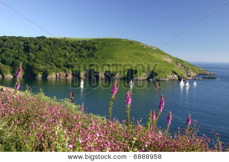 Mouth Of Yealm Estuary South Hams Devon