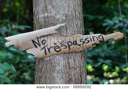 No Trespassing sign hanging on tree in forest
