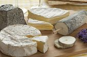 stock photo of cheese platter  - French cheese platter as dessert - JPG