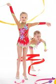 Постер, плакат: adorable twin girls gymnasts