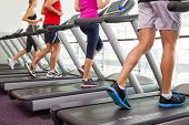 stock photo of treadmill  - Row of people on treadmills at the gym - JPG