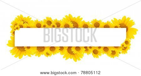 Beautiful sunflowers and card with space for your text isolated on white