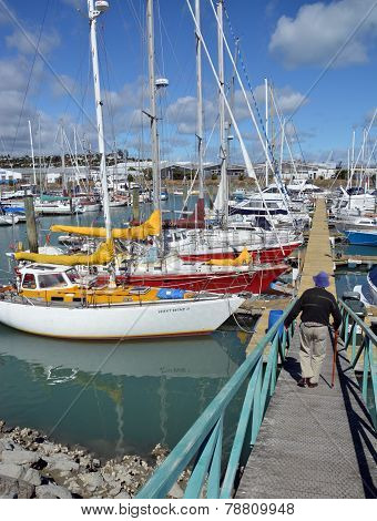 Nelson Boat Marina, New Zealand.