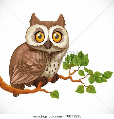Cute Owl Sitting On A Branch Isolated On A White Background