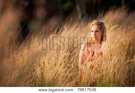 Blonde Girl In Red Dress Stand In Golden Fild