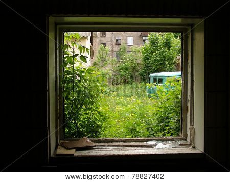 View of deserted backyard from broken window