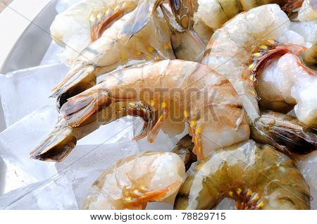 cold fresh raw tiger shrimps with ice