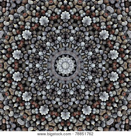 Pattern Of Macro Poppy Seeds