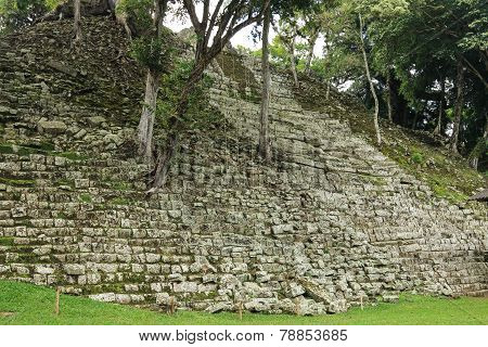 Abandoned Mayan temple, Copan, Honduras