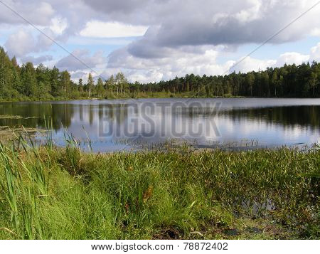 Lake in the Russian taiga