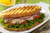 stock photo of tomato sandwich  - Homemade Grilled Tuna Panini Sandwich - JPG