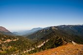 pic of olympic mountains  - Hurricane Ridge in the Olympic Peninsula - JPG