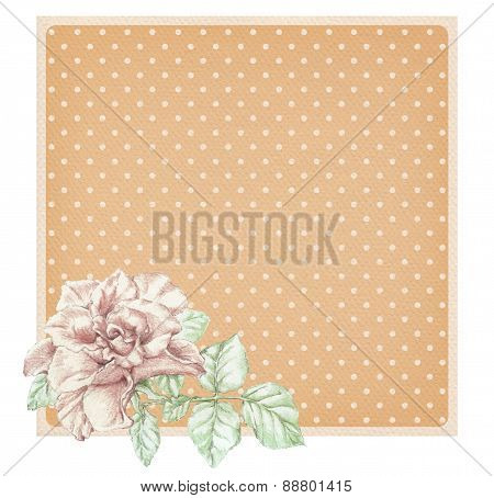 Dotted Rose Background