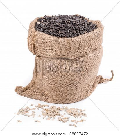 Close up of black sunflower seeds