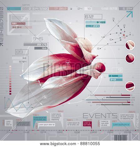 Flower Infographics Set