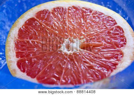 Grapefruit In The Ice