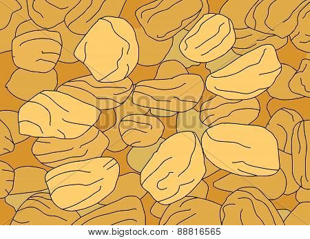 Golden Raisins Close Up