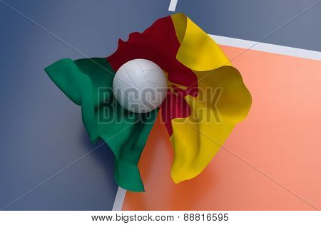 Flag Of Cameroon With Championship Volleyball Ball