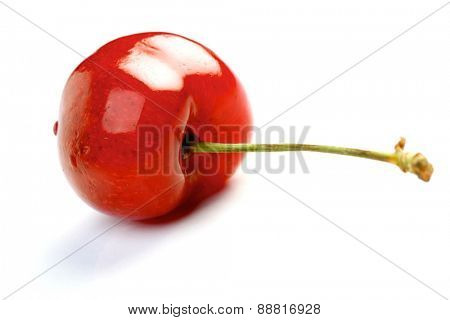 Cherry on white background - close up