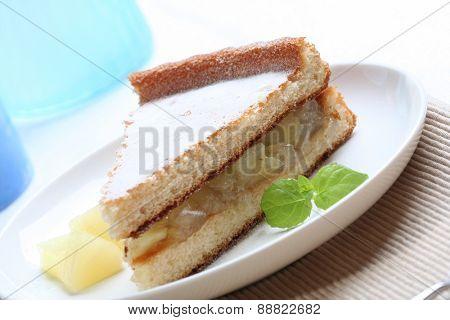 Studio shot of apple pie on plate