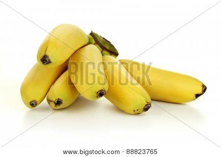 Bunch of bananas - studio shot