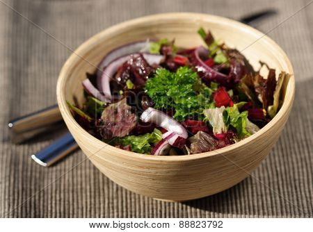 Close-up of spring salad in wooden bowl