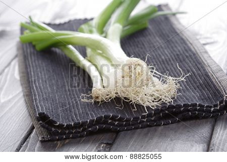 Leeks on cloth - studio shot