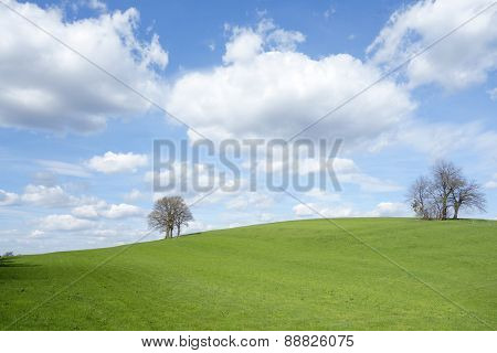 An image of a landscape with trees and clouds