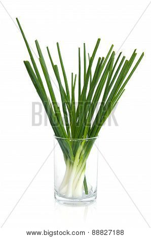 Wet Spring Onion In A Glass Isolated