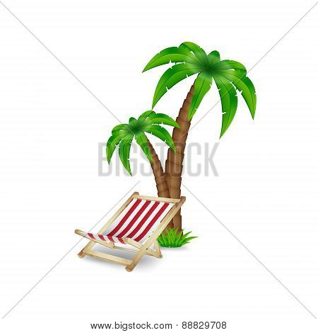 Palm tree with deck chair
