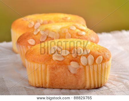 Banana cake in paper cup on Dining table