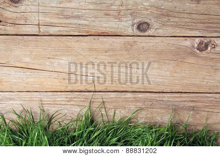 weathered wooden plank fence and grass.
