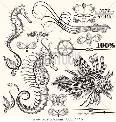 Collection Of Vector Hand Drawn Sea Elements
